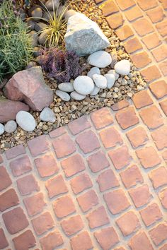 Decorative stones are perfect for breaking up hard edges and blending hard landscaping into planting areas.