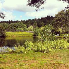 The beautiful pond at Abbott's Glen clothing optional inn & campground. #abbottsglen #vermont