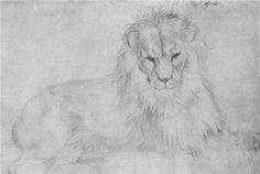 Lion - Albrecht Durer