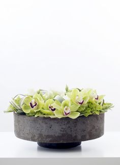 pureness in a bowl. Green cymbidiums  - (re) Pinned by www.westpointorchids.com