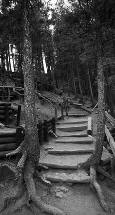 Hiked this trail many times! Helen Hunt Falls Trailhead, Colorado Springs, CO. these are the stairs I climbed when I was over due with you! Living In Colorado, Colorado Homes, Colorado Trip, Oh The Places You'll Go, Places To Travel, Places To Visit, Travel Destinations, Estes Park, Colorado Springs