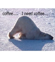 """Pump up your morning with a """"need coffee"""" meme! Here's a list of funny memes for you and all the coffee lovers out there! Coffee Humor, Coffee Quotes, Funny Coffee, Tea Quotes, I Love Coffee, My Coffee, Coffee Break, Coffee Talk, Coffee Today"""
