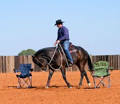 """When it comes to training your horse, your imagination is your greatest tool. The more creative you can be in your lessons, the more interested your horse will be in his job. You've heard me say, """"Consistency is your greatest ally and inconsistency is your greatest enemy."""" And that's absolutely true. It will take you a very long time to train your horse if you're inconsistent. However, just as important as consistency is, you have to be sure to include variety. Variety means mixing it up for ..."""