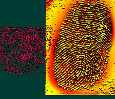 Mutiple Image Forensic Comparator 2D/3D software, Advanced scientific graphics