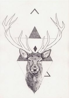 Art and Illustration by Peter Carrington Art And Illustration, Hirsch Illustration, Tattoos 3d, Hirsch Tattoo, Stag Tattoo, Geometric Deer, Geometric Drawing, Geometric Designs, Deer Art