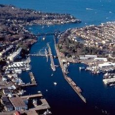 The Ballard Locks from Above - Seattle, WA   busiest locks in US   ships   botanical garden   fish ladder   free Seattle Washington, Washington State, Western Washington, Lake Union, Beautiful Park, Beautiful Gardens, Beautiful Places, Emerald City, The Fresh