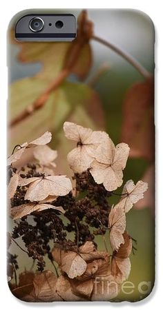 Faded Autumn Hydrangeas phone cover by Rowena Throckmorton. Protect their new iPhone or Galaxy with an impact-resistant, slim-profile, hard-shell case. The image is printed directly onto the case and wrapped around the edges for a beautiful presentation.