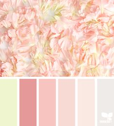 Most Wonderful Spring Color Palette Collections - Are you looking for inspiration for the color combination of the exterior or interior of your home ?