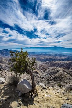 Looking out from Keys View, Joshua Tree,  (Nature)  EarthPorn