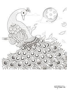 final-peacock-coloring-page-2.jpg (2500×3300)