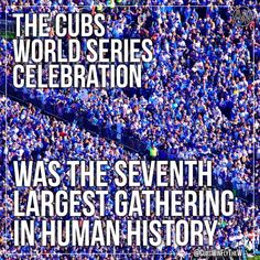 Some of the CUBS fans came together to celebrate Chicago Cubs Fans, Chicago Cubs World Series, Chicago Cubs Baseball, Chicago Bears, World Series 2016, Cubs Gear, Chicago Attractions, Cubs Win, The Blues Brothers