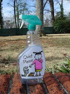 cute idea..quiet spray