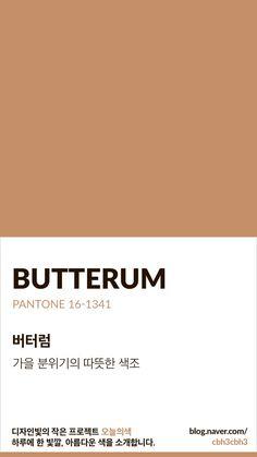 [오늘의 빛: 오늘의 색] 버터럼 : 네이버 블로그 Pantone Colour Palettes, Pantone Color, Colour Pallete, Color Schemes, Brown Pantone, Good Notes, Colour Board, Color Swatches, Color Names