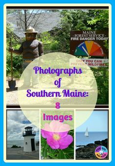Scenes from southern Maine are represented in this set of 8 photographs. Use them when teaching about New England or the 50 States, or whenever you need realistic images of the Atlantic Ocean, lighthouses, or flowers. #maine