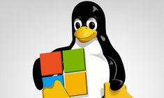 Windows 10, Gnu Linux, Microsoft, Disney Characters, Fictional Characters, Terminal, Inevitable, Software, Linux Operating System