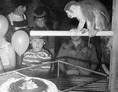 72 Best 1949-1959 images in 2014 | 1950s art, 1960s, 1970s