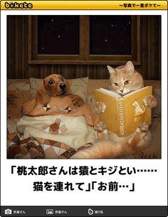 「桃太郎さんは猿とキジとい……猫を連れて」「お前…」