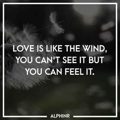 Love is like the wind, you can't see it but you can fee at Alphinr See It, Instagram Story, Love, Feelings, Quotes, Amor, Quotations, Qoutes, Quote