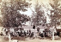 Here Are The Oldest Photos Ever Taken In South Dakota And They're Incredible Unknown Location, Cowboys sit under the trees to enjoy some dinner. Vintage Pictures, Old Pictures, Old Photos, Westerns, Cattle Drive, Real Cowboys, Into The West, Cowboy And Cowgirl, Cowboy Art