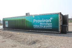 Spandoek 12x2,2 m, opgespannen in een buizenframe, dat we bevestigden op een EURO-container. Opdracht voor chemiebedrijf Proviron uit Hemiksem voor hun 'algenproject' op de Hooge Maey in de Haven van Antwerpen.