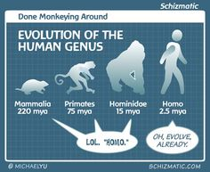 Done Monkeying Around | by schizmatic.com