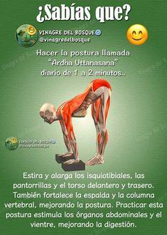 yoga b tourism studies - Tourism Ashtanga Yoga, Yoga Pilates, Kundalini Yoga, Yoga Flow, Yoga Meditation, Yoga Fitness, Hata Yoga, Easy Yoga Poses, Yoga At Home