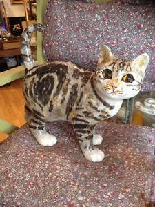 Beautiful Winstanley Cat - Size 5