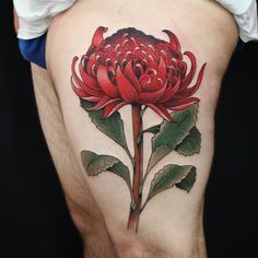 """adrianhing: """"Waratah, Sydney. Would love to do more large scale flowers like this in 2017. I'm taking booking for next year. Email adrianhing@live.com for info. Thanks! @the_darling_parlour """" Adrian Hing Australian Tattoo, Dali Tattoo, Arm Tats, Henna Body Art, Fresh Tattoo, Botanical Tattoo, Professional Tattoo, Tattoo Designs, Tattoo Ideas"""