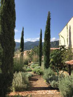 Provence garden in Khaoyai Thailand Provence Garden, Vineyard, Thailand, Sidewalk, Country Roads, Landscape, Outdoor, Outdoors, Scenery