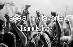 Bucket list: See all my favorite bands live