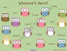 Owl Theme Attendance for SMART Board