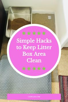 Want to keep the litter box area clean? Steal my routine! I've scooped hundreds of boxes working with cats. These are the best litter box solutions. You'll keep the litter area clean, keep stink out, and keep your cat happy. Did you know the cat's nose is 14 times stronger than ours? Cats deserve and prefer a CLEAN bathroom. They like sanitary boxes, naturally clumping and unscented litter, and no covers. Covers trap the smell and don't leave space for moving around. Use my other hacks today! Best Litter Box, Cat Behaviour, How To Cat, Cat Nose, Living With Cats, Cat Hacks, Cat Sitter, Cat Care Tips, Routine