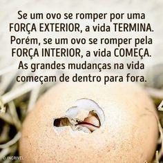 """3 curtidas, 1 comentários - Eduardo Ribeiro (@dudublack2015) no Instagram: """"Boa Introspecção!"""""""