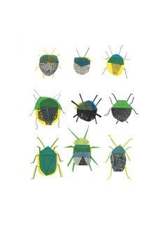 Clover Robin – Shield Bug art print - Limited edition