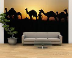 Silhouette of Camels in a Desert, Pushkar Camel Fair, Pushkar, Rajasthan, India Mural de parede – grande na AllPosters.com.br
