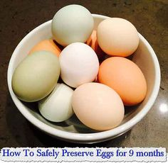 How To Safely Preserve Eggs for 9 months  If you've ever kept a flock of chickens, you're probably aware of a basic perversity of homestead life: While your family's consumption of eggs tends to remain fairly constant year round . . . your hens' production of the delicious edibles doesn't. I have …