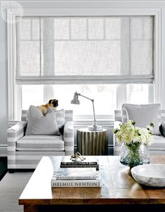 Family room featuring striped armchairs and barnboard coffee table {PHOTO: Michael Graydon}