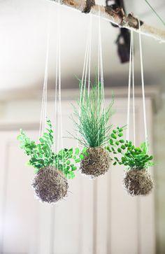 Set of 3 Hanging Kokedama String Garden. Care Free by ArtisanMoss.