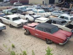 4,000-plus old cars will be crushed when an East Troy, Wisconsin, junkyard closes this winter.