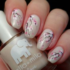 Cherry blossom inspired pink nail art design. A pearl colored polish is used as base while branches of the cherry tree are painted in brown. The blossoms themselves are painted in pink and white polish.