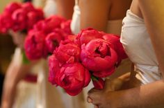 red peony bridesmaids bouquets.... love that it is a bright red flower that is not a rose