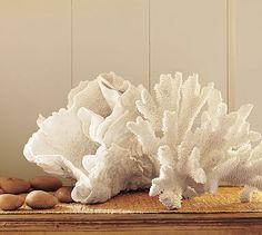 Extraordinary Coral Ear from Pottery Barn