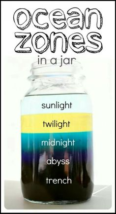 Ocean in a jar science experiment