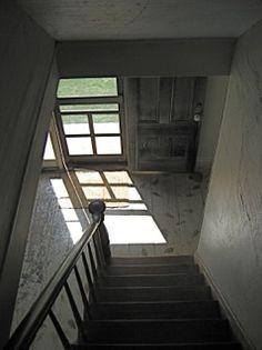 Tumblr   the olsen house