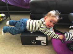 """""""He could not get down."""" Submitted By: Janina B.  Location: United Kingdom"""