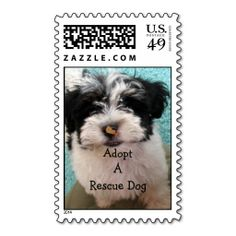 ==>>Big Save on          Havanese Puppy Postage Stamp           Havanese Puppy Postage Stamp online after you search a lot for where to buyShopping          Havanese Puppy Postage Stamp Here a great deal...Cleck Hot Deals >>> http://www.zazzle.com/havanese_puppy_postage_stamp-172952910307225041?rf=238627982471231924&zbar=1&tc=terrest