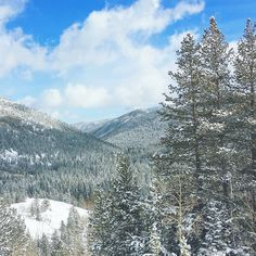 It snowed last night and today we snowshoed in a Disney movie. Getting to Lost Lake from Eldora took us 25 hours but coming back downhill was just over an hour!  #hessietrail #indianpeakswilderness #colorado #visitcolorado #coloradolive #cometolife #rockies #rockymountains #vuoret #travel #matka #reissu #nordicnomads #snowshoe #lumikenkäily #talvi (via Instagram)