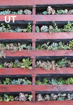 Create your own wonder of the world - Vertical Pallet Planter