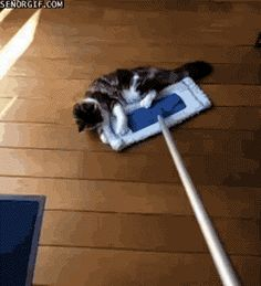 12 Ways To Make Cleaning Fun (No, Really!)   http://bzfd.it/Y92Qq1