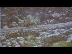 Дороги Гипербореи в наши дни. Сделано на века. Кольский полуостров.
